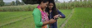ICT Nepal -  Photo by C. de BodeCGIAR.jpg